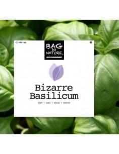 Bizarre Basilicum kweeksetje