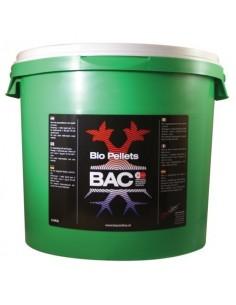BAC Bio korrels 5 kg.