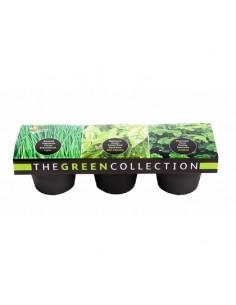 Buzzy Color 3 pots Zwart/Grijs Groen