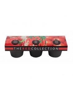 Buzzy Color 3 pots Zwart/Grijs Rood