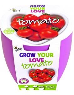 Buzzy Grow Kit Lovebreaker Tomaat