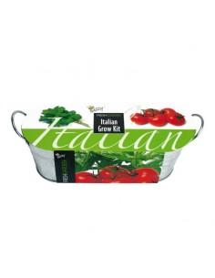 Buzzy Fresh Garden Grow Kit Italian