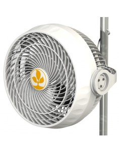 Secret Jardin Monkey Fan - 30W - 23cm