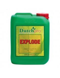 Dutchpro explodieren 5 Ltr.