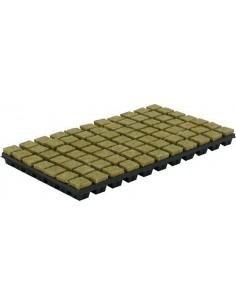 Grodan Steenwoltray 150 st. p/ tray 2x2 cm.