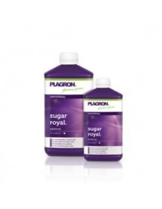 Plagron Sugar Royal 1ltr