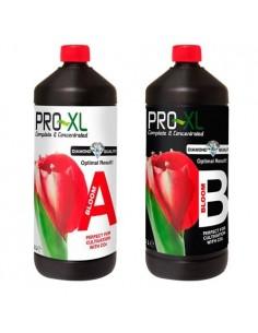 Pro Xl Bloom A&B 1 liter