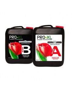 Pro Xl Bloom A&B 5 liter