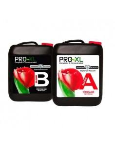 Pro XL Bloom A&B 10 liter