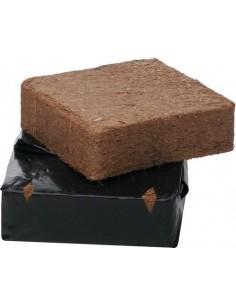 B`cuzz Cocos B'ounce Block
