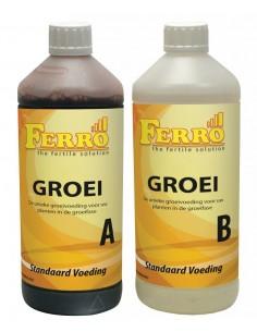 Ferro Aarde/Hydro Groei A+B 1 ltr