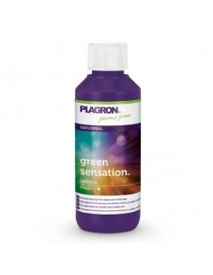 Plagron grüne Sensation 100 ml