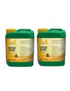 Cocos blühen Nährstoffe A&B, Eisen Standard 5ltr