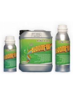 Ecolizer Bloom up 500 ml