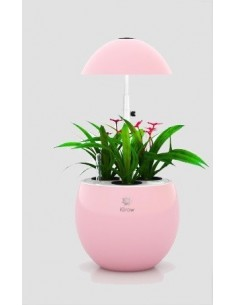 Urban Green I-Grow 3 LED, roze