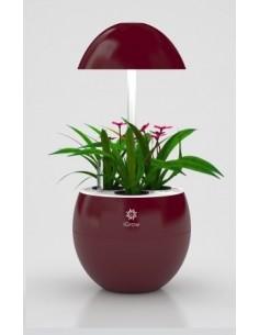 Urban Green I-Grow 3 LED, rood