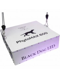 Black Dog Phytomax 600 led kweeklamp