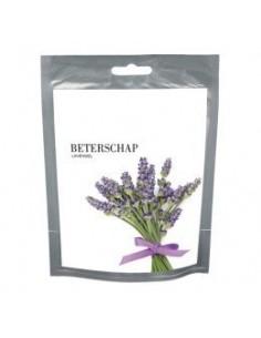 Wishes Beterschap (Lavendel)